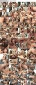 Tokyo Hot n1085 Acme Slave Debut